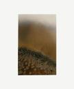 Untitled W.O.F 01-11-14 2013 5 x 3 1/8