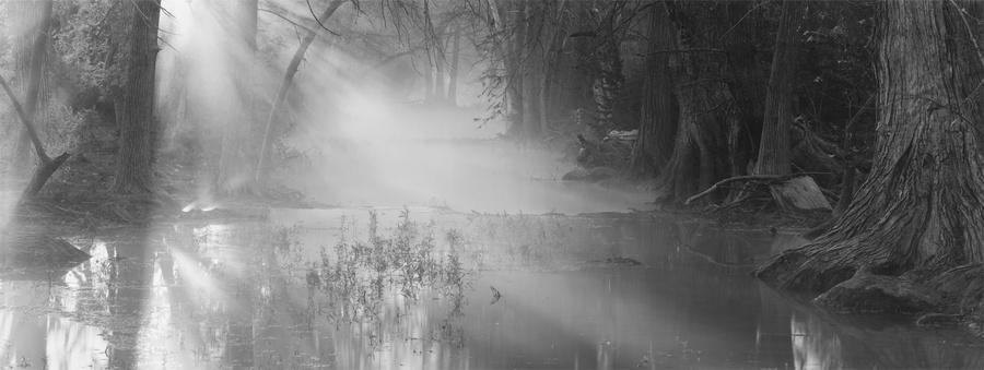 Cypress Creek, 7:19 AM, Nov 7, 1996, Wimberley, TX