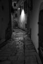 Nocturne, Venosa # 2
