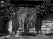 Doors and vine, Istanbul