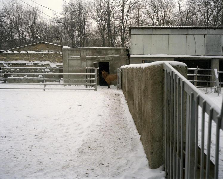 Zoo, Odessa