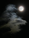 Moonscape, Matlacha, FL 2008