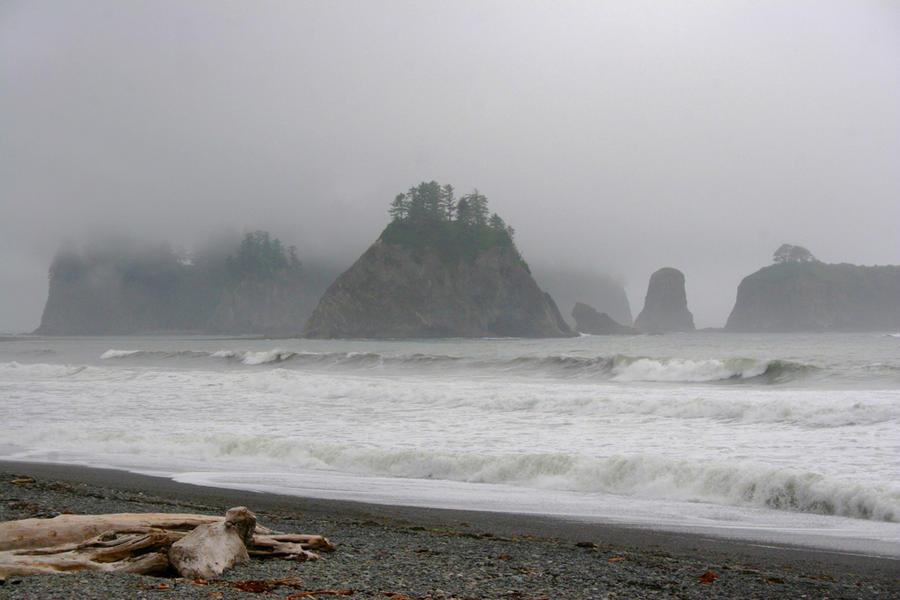 Pinnacles in the Mist, Three Capes Loop, OR, 2009