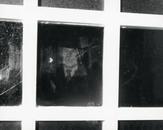 Appearances & Observation: Papa ante portas, 2002