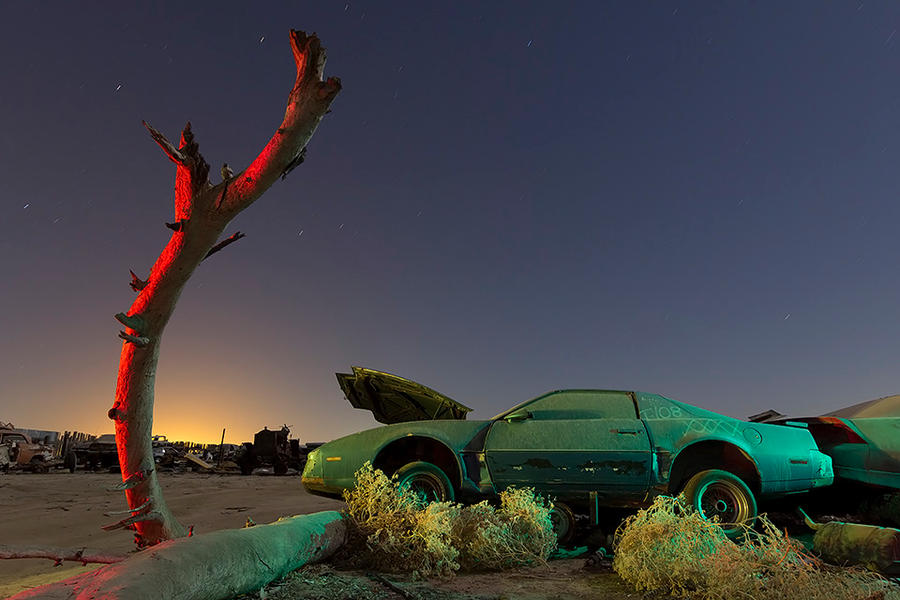 Under the Wishing Tree-- Firebird