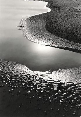 Salt Creek #94, 1988