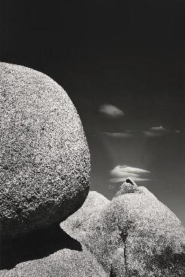 Leda's Landscape, 1984
