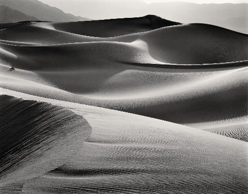 Evening Dunes, 1980