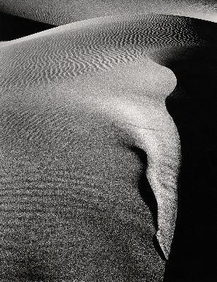 Mesquite Flat #76, 1980
