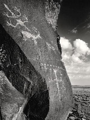Lone Grave Butte #660, 2008