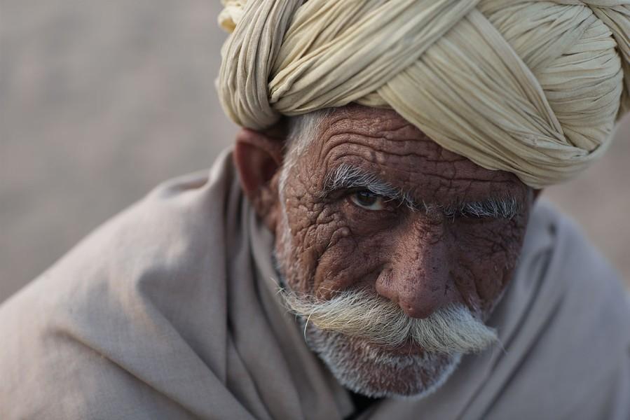 India, Pushkar, 2012