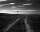 High Plains 16
