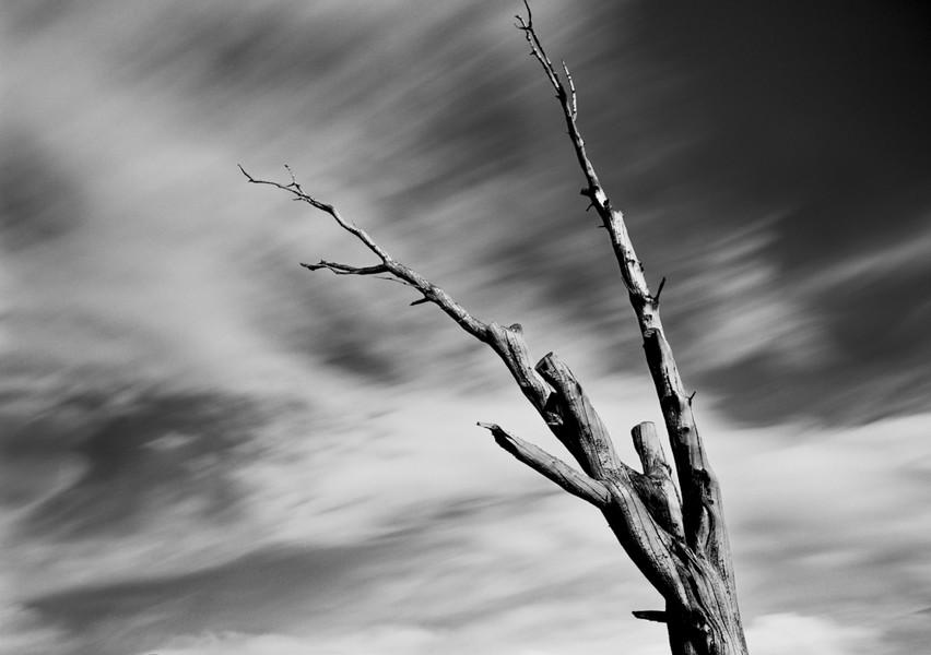 Deadwood 2