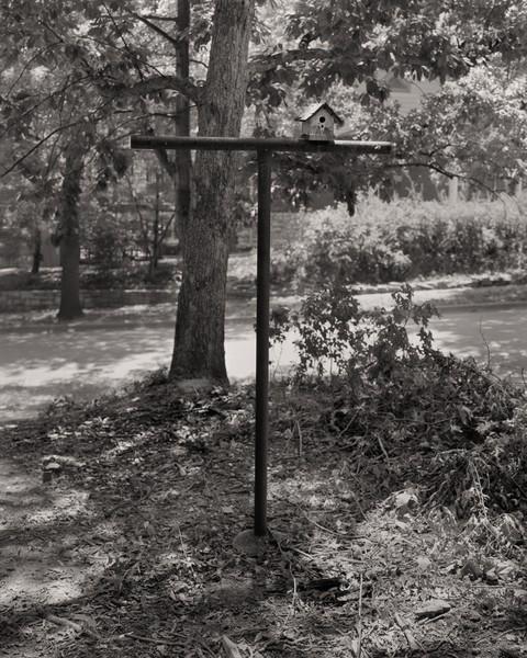 Birdhouse and clothesline