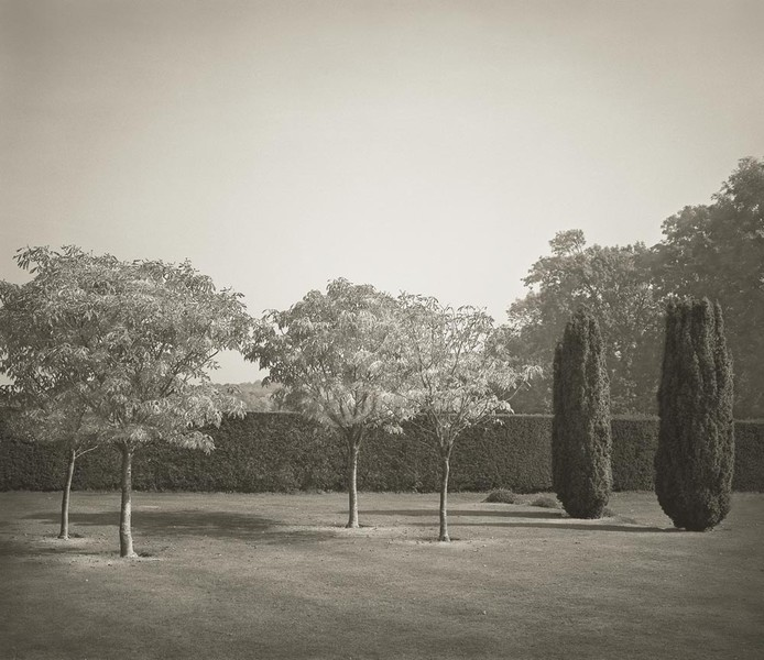 Six Trees, Batemans (from In the Garden)