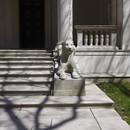 Morgan Library Lion