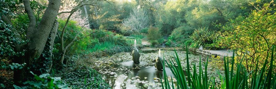 Spouting Fish Fountain Pond