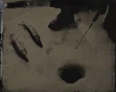 Fish on the Ice