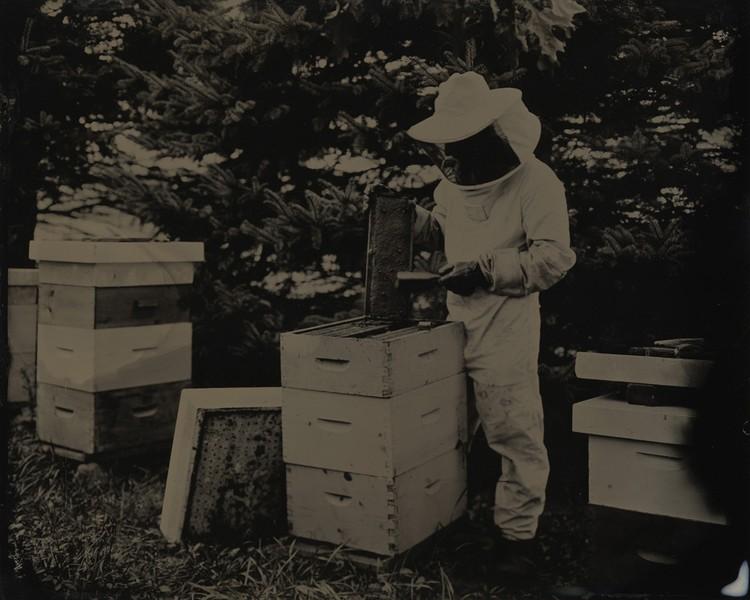 Gary & His Hives
