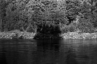 Clackamas River, 2009