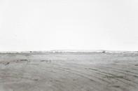 Matthew Marks-Brice Marden: New Paintings