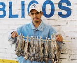 Market Seller with Field Rats, Zacatecas