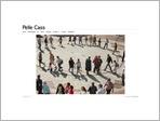 Pelle CASS