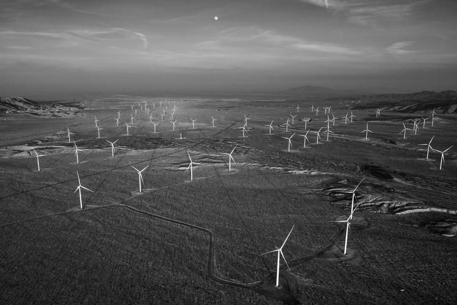 Ocotillo Wind, California