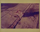 Untitled (Stroller)