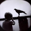 Boy and Hawk