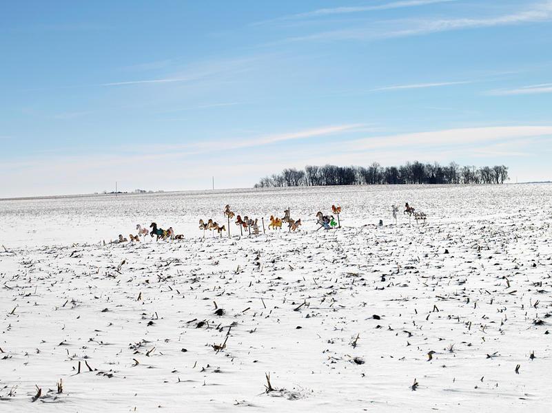 Hobby Horses, Route 24, Weston, IL 2007