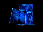Glowing Evidence: Box