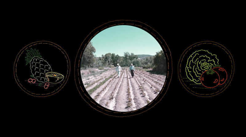Glowing Evidence: Lucero's Organic Farm