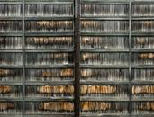Columbus-Wooden Wall-2011