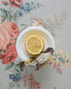 Still Life with Warbler and Lemon, 2010