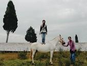 Gypsy Horsedealers, Alentejo, Portugal
