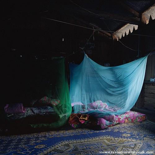 Yunnan-Blue Mosquito Netting