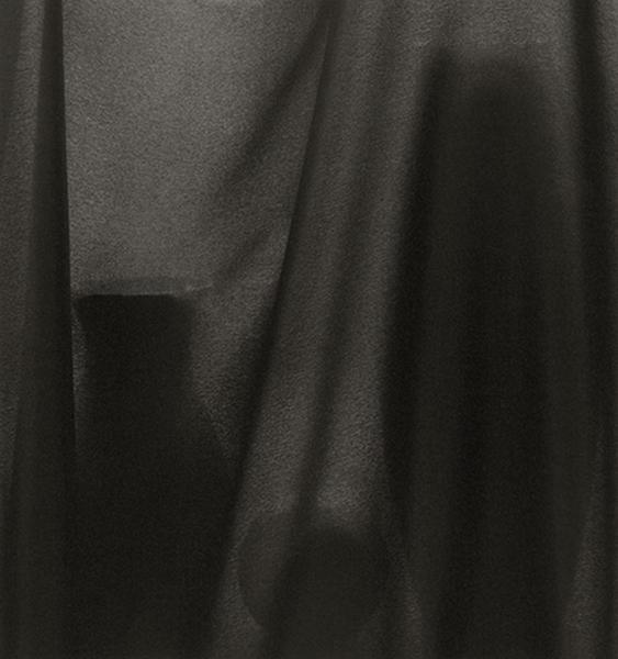 Veiled Still Life #02-44, 2002-2006