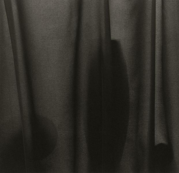 Veiled Still Life #02-25a, 2002-2006