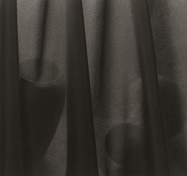 Veiled Still Life #02-49a, 2002-2006
