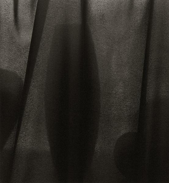 Veiled Still Life #02-12, 2002-2006
