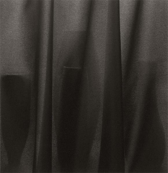 Veiled Still Life #02-51a, 2002-2006