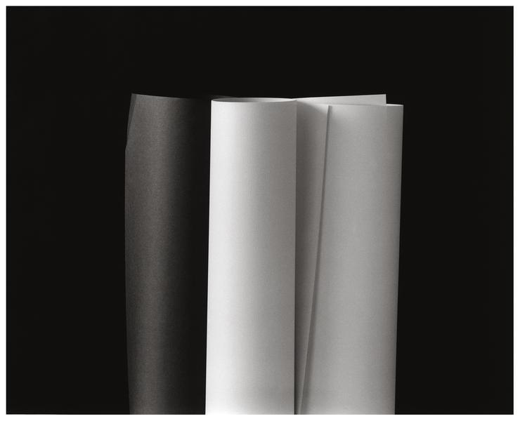 Manuscripts #6, 2008