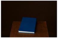 Circle of Reading #3, 2010