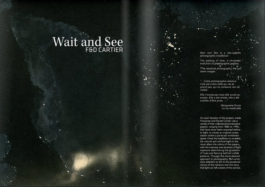 Wait and See, Ballarat Issue_10, online  2014