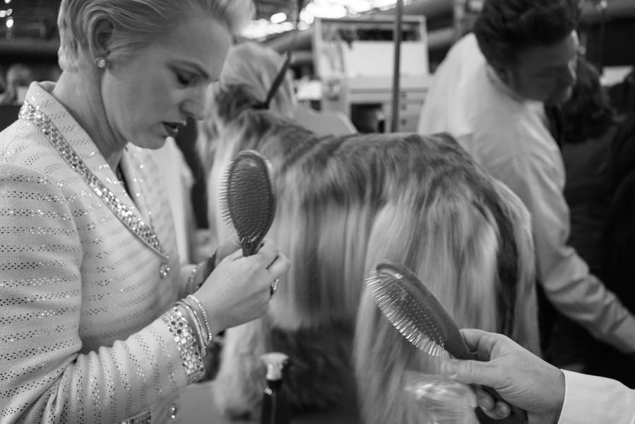 Afghan Brushes, New York, 2014