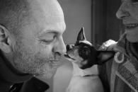 Fox Terrier Kiss, New York, 2014