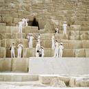At The Pyramid, 2009