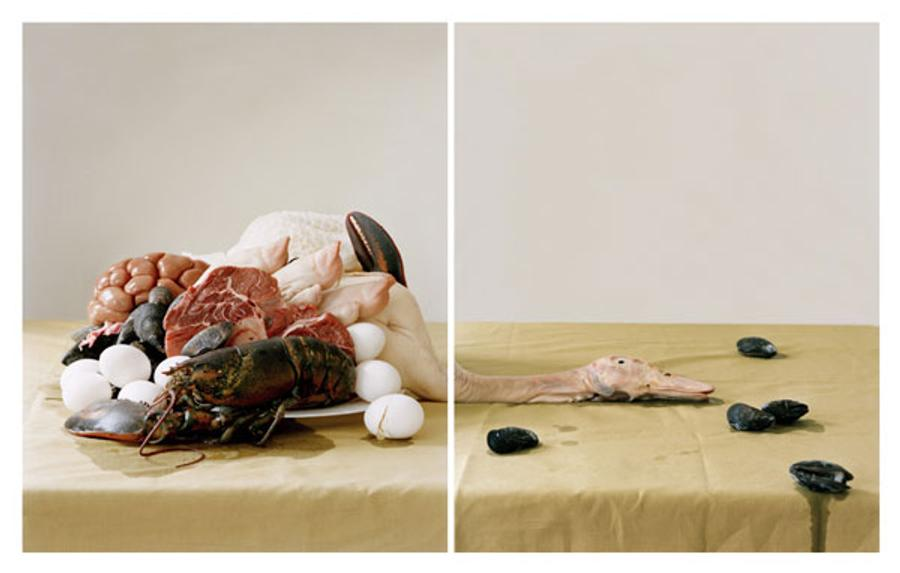Untitled (from Lessons of Impermanence)
