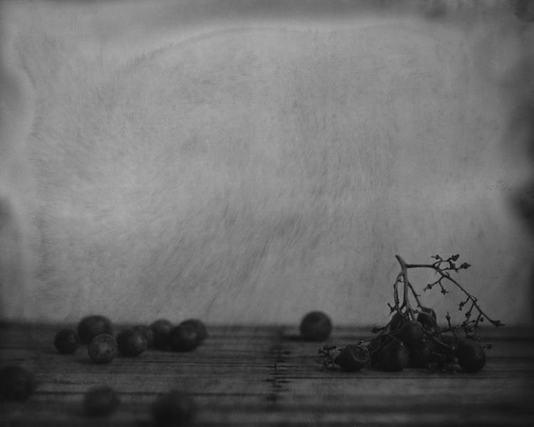 Still Life (grapes)